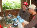 Rather than taking frogs from the wild, Andrew and Mark take hi-tech equipment to the rainforests of Costa Rica!