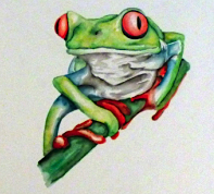 Tree_Frog_Daniel_Callaghan_Low_Res copy
