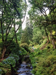 The Dell at Bodnant Garden © Matthew O'Donnell