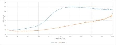 Spectra graph