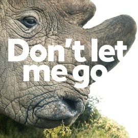 MM_Rhino-Event copy2